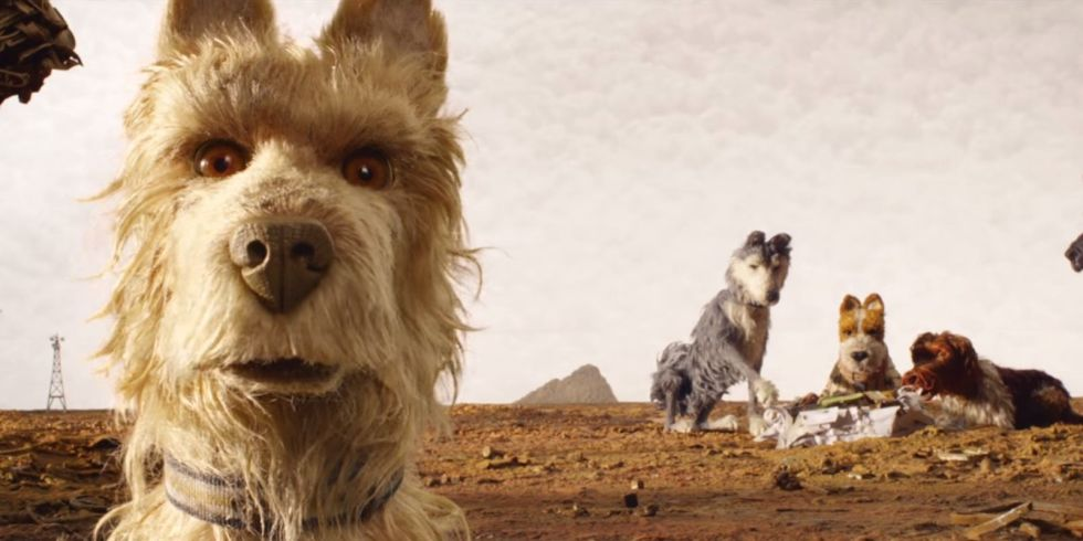Wes Anderson apre Berlino con 'Isle of Dogs'