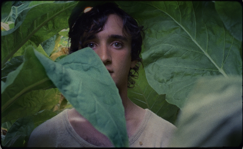 """Happy as Lazzaro"" nominated at the Independent Spirit Awards"